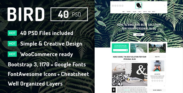 Bird - Elegant Magazine Blog PSD Template