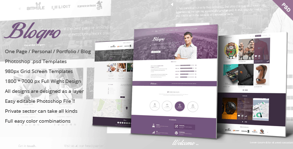 Blogro - One page Personal web design