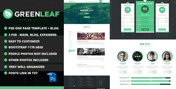 GreenLeaf One Page Web + Blog PSD Template - 4