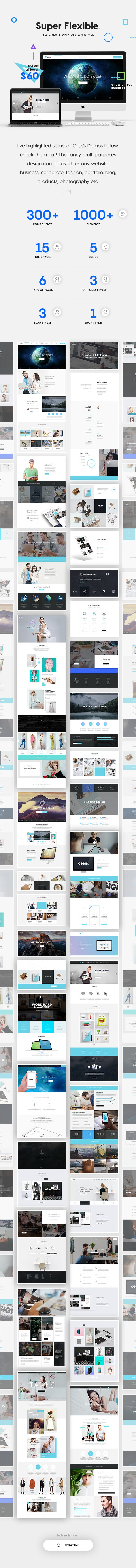 Cesis | The Ultimate Multi-Purpose PSD Template of 2016