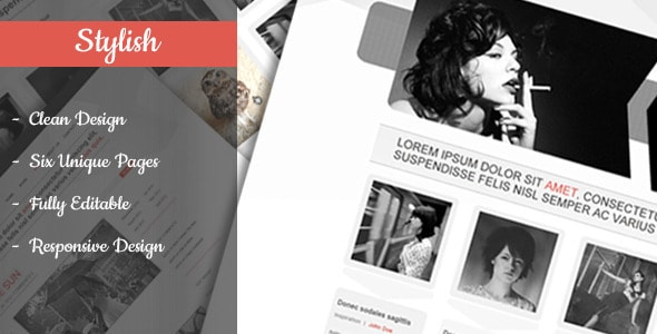 Stylish - Clean & Flexible PSD Template